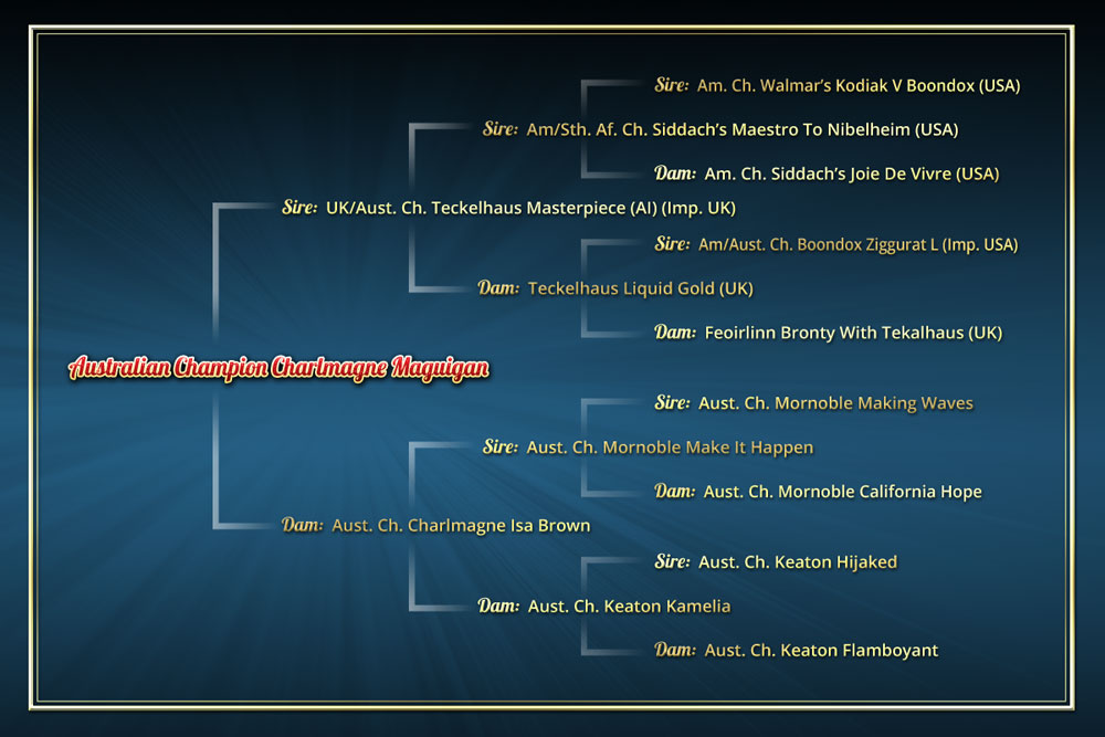 Maguigan's Pedigree