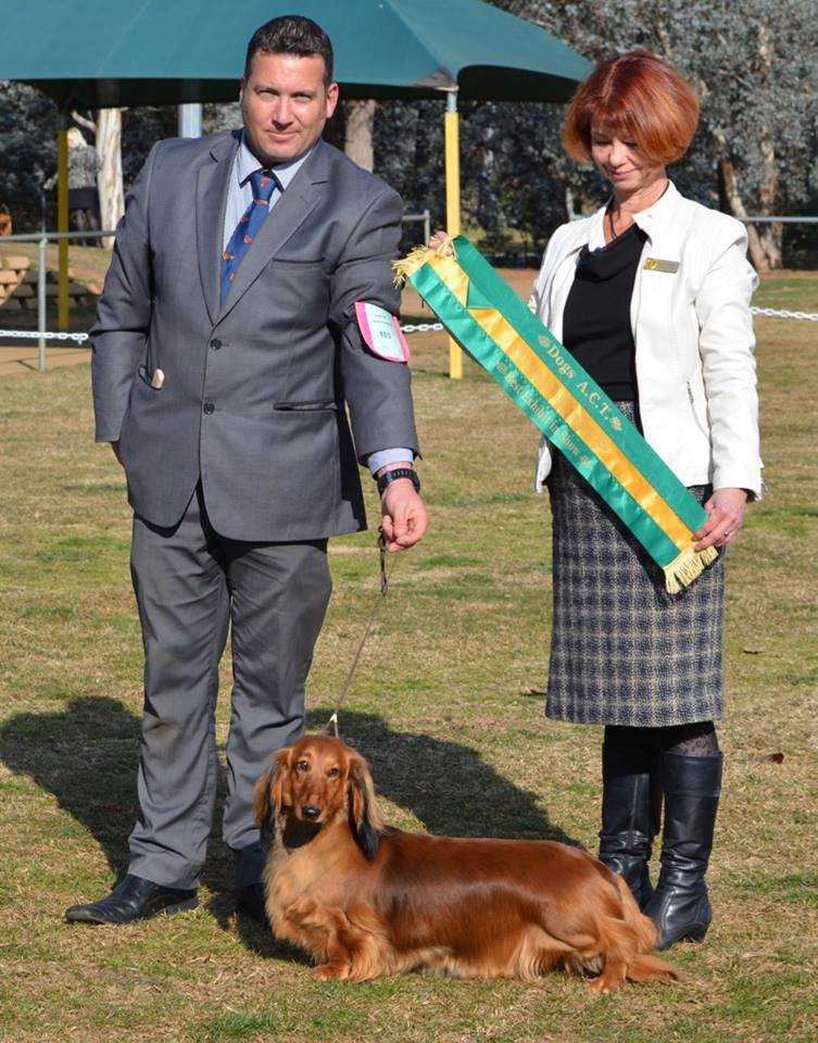 Liberty Dogs ACT Best In Show