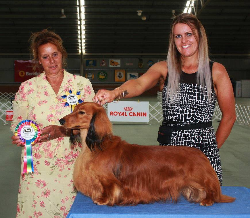 Jimmy Best Champion in Show