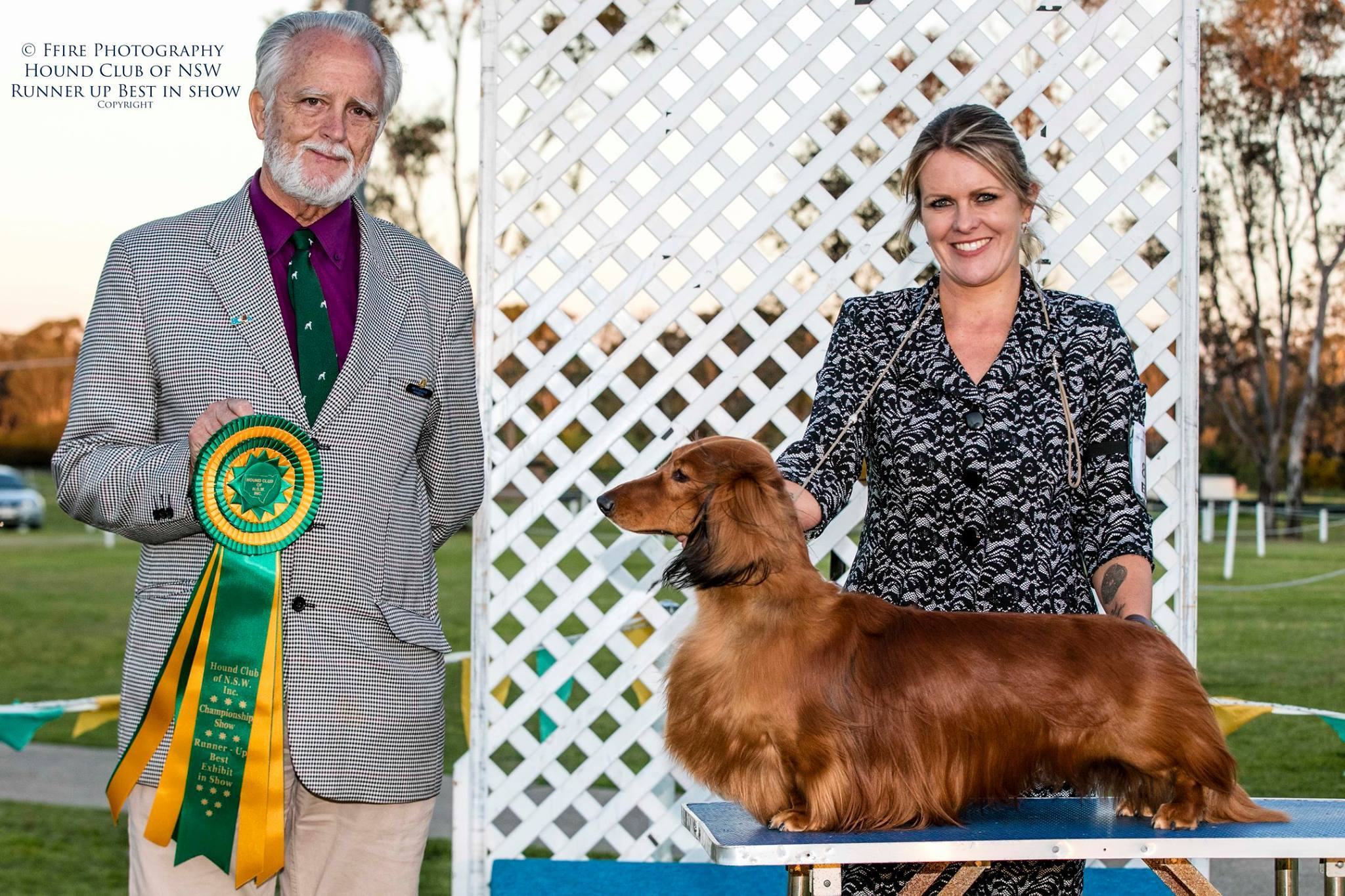 Jimmy wins Runner-Up Best in Show at the Hound of NSW!