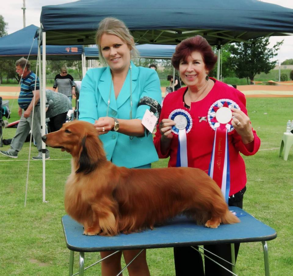 'Jimmy' Awarded Best Exhibit in Show at the Albury & Border Kennel Club Championship Show