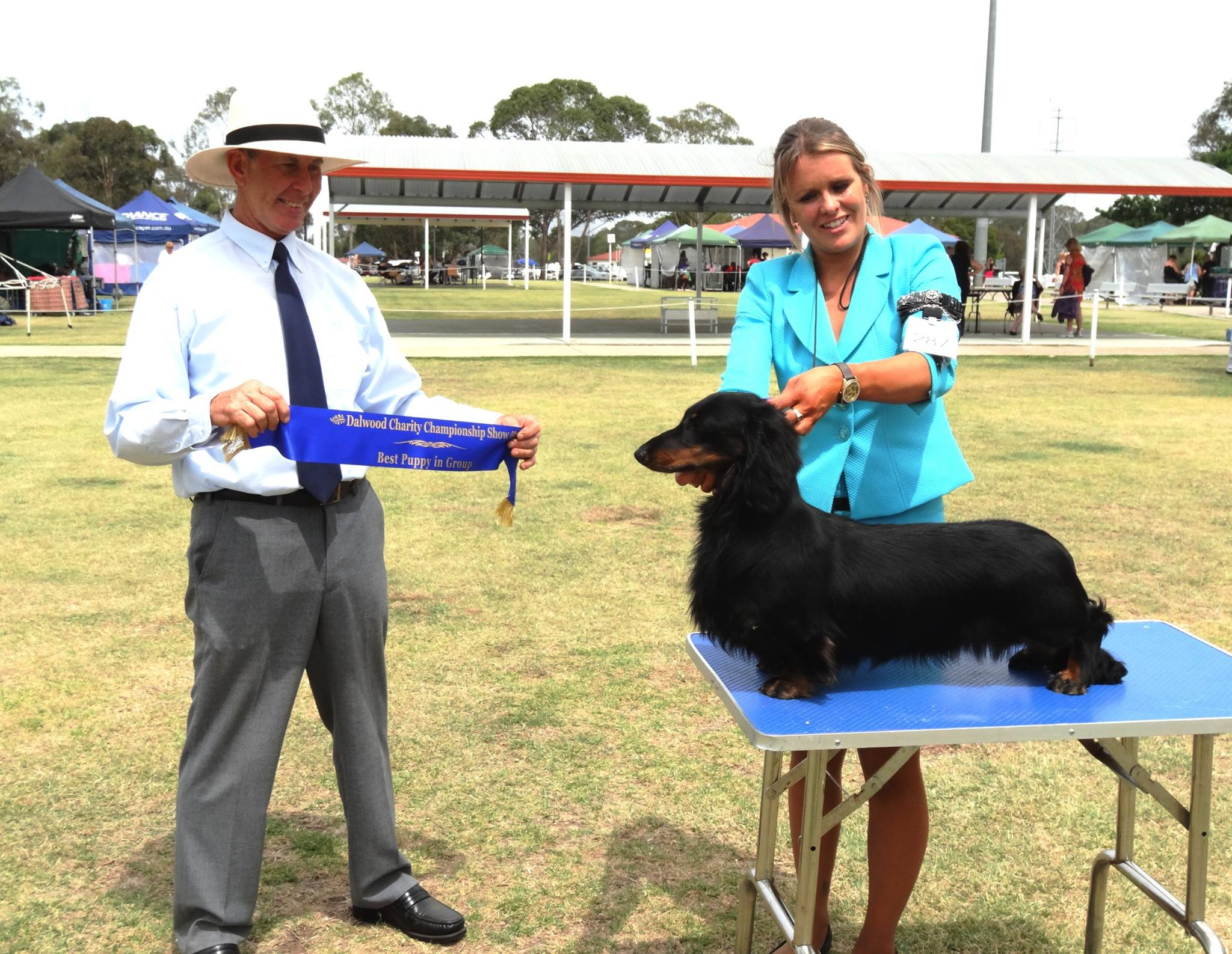 'Ringo' Awarded Best Puppy in Group