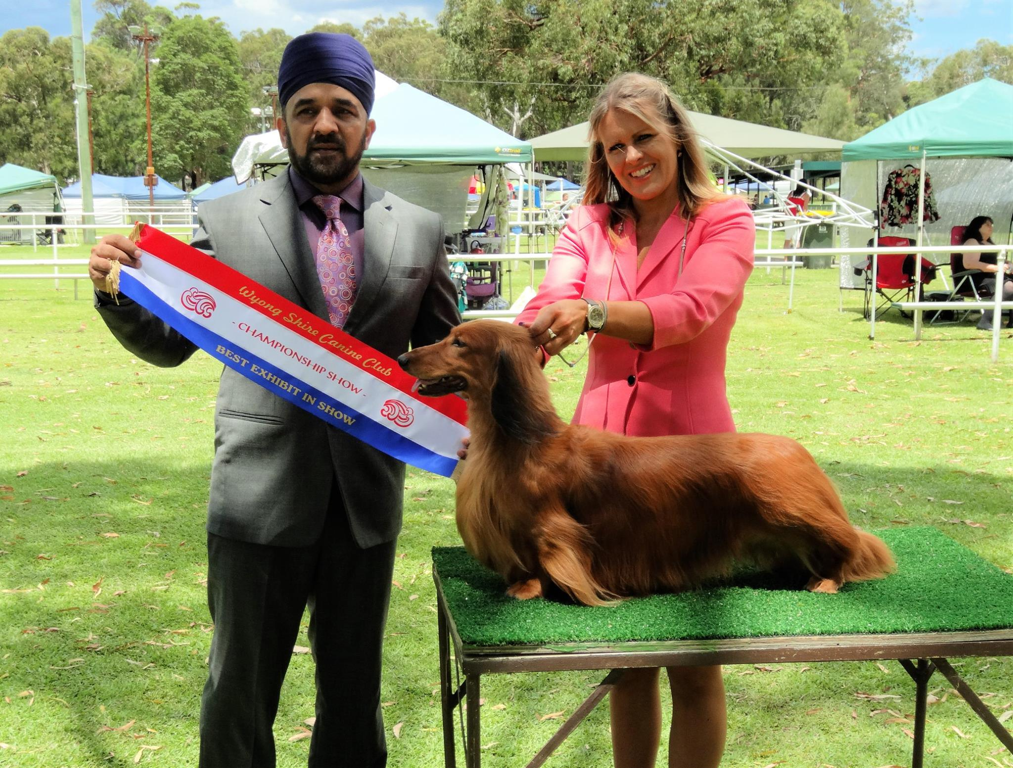 'Jimmy' Wins Best in Show under Mr Javinder Singh Pawar (India)!