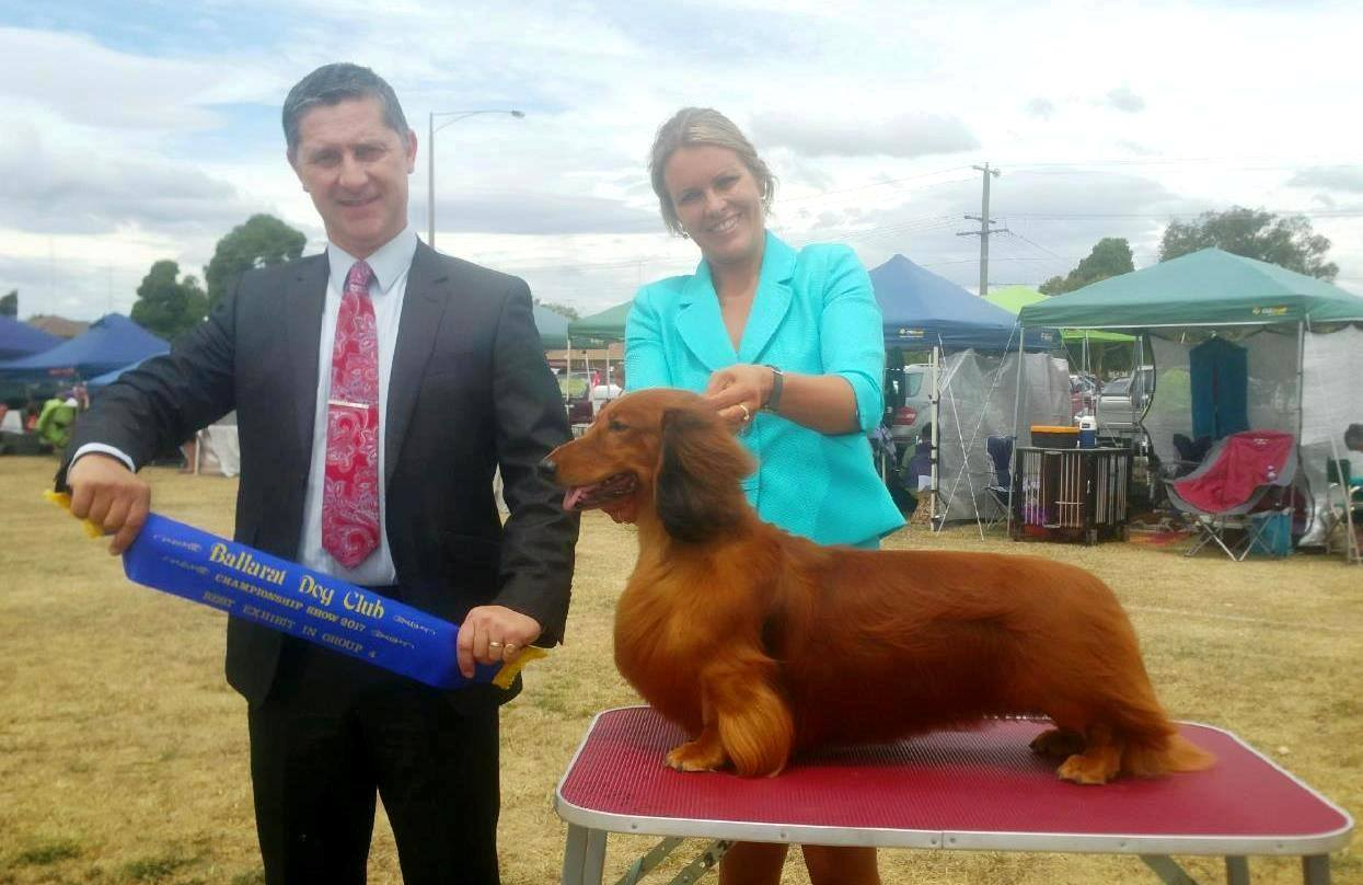 'Jimmy' wins Runner-Up Best in Show! - Pictured here winning Best in Group under Mr. Jonathan Marshall (VIC)