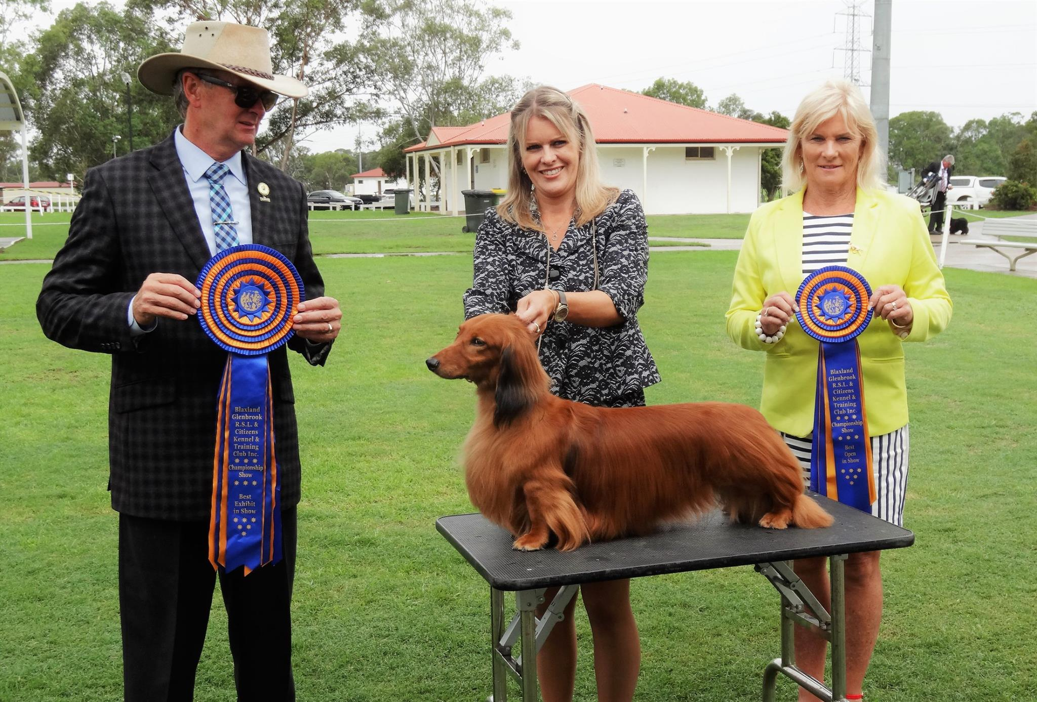 Jimmy Wins Best In Show at the Blaxland Glenbrook RSL & Citizens Kennel & Training Club Inc. Championship Show in Sydney