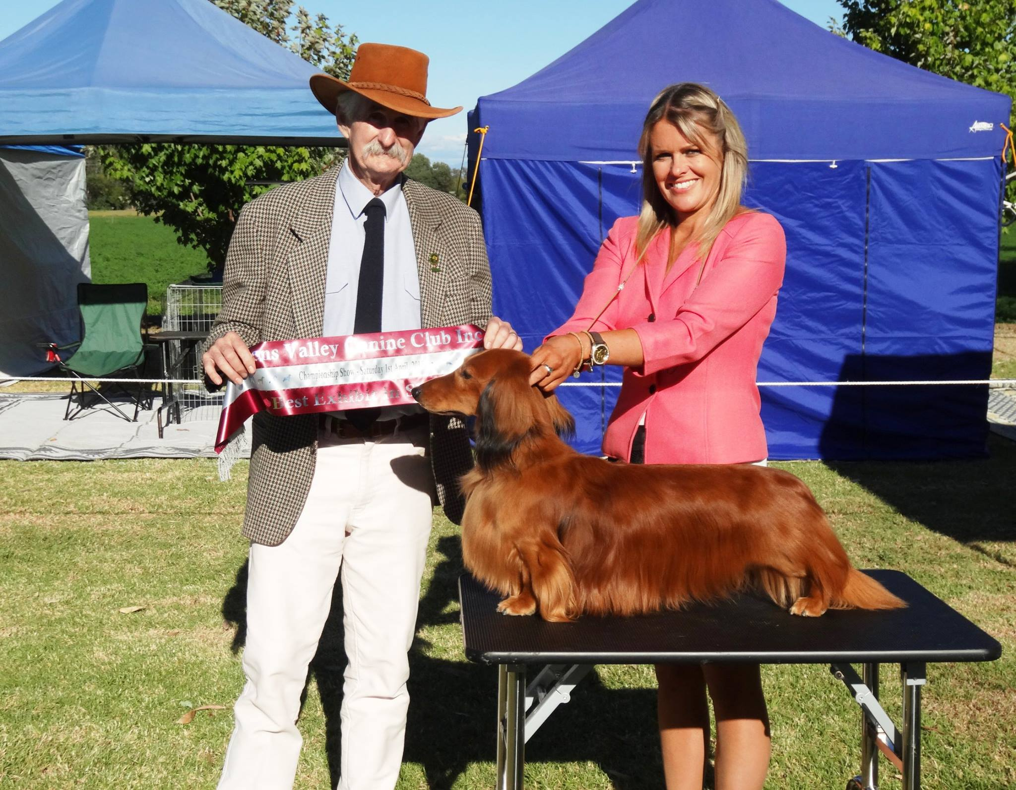'Jimmy' awarded Best in Show at the Ovens Valley Canine Club Inc. Championship Show