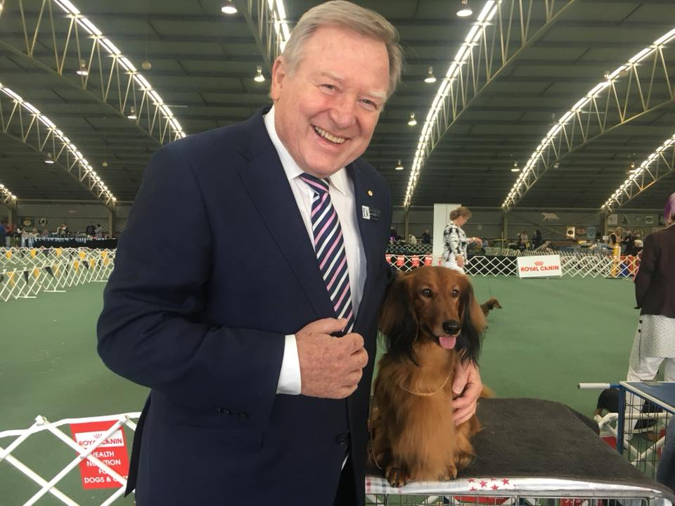 Dogs Victoria Patron and Channel Nine News Host, Peter Hitchener OAM, pictured here with 'Jimmy' at the Dachshund Club Of Vic Championship Show. It appears that 'Jimmy' is preparing for life after the show-ring....as an apprentice news reader!
