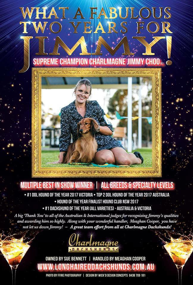 Jimmy's Latest Dog News Australia Advertisement!