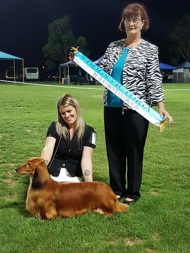 'Jimmy' Wins Best In Group (BIG1) – Judge,  Lynda Brandt (NSW)