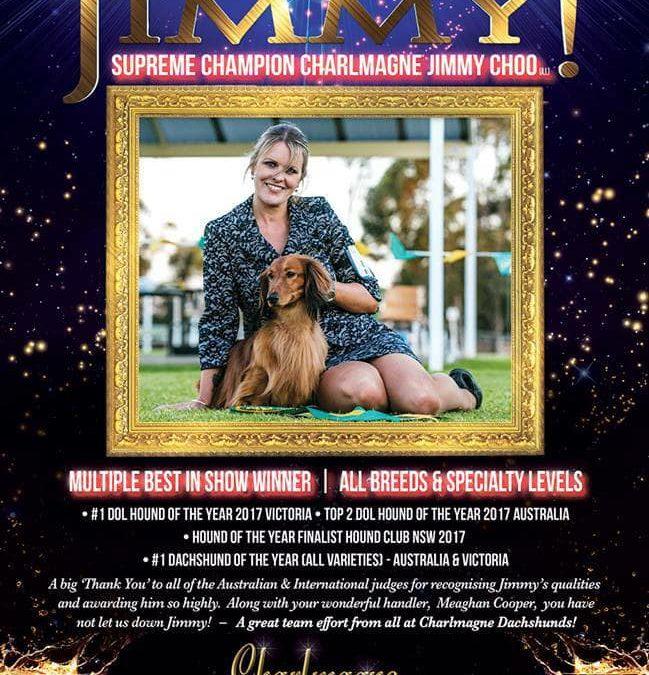 'Jimmy's' Latest DogNews Australia Advertisement